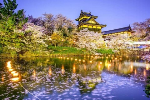 日本のさくら名所100選。奈良・郡山城お花見ラン46キロ【サトウ練習会】