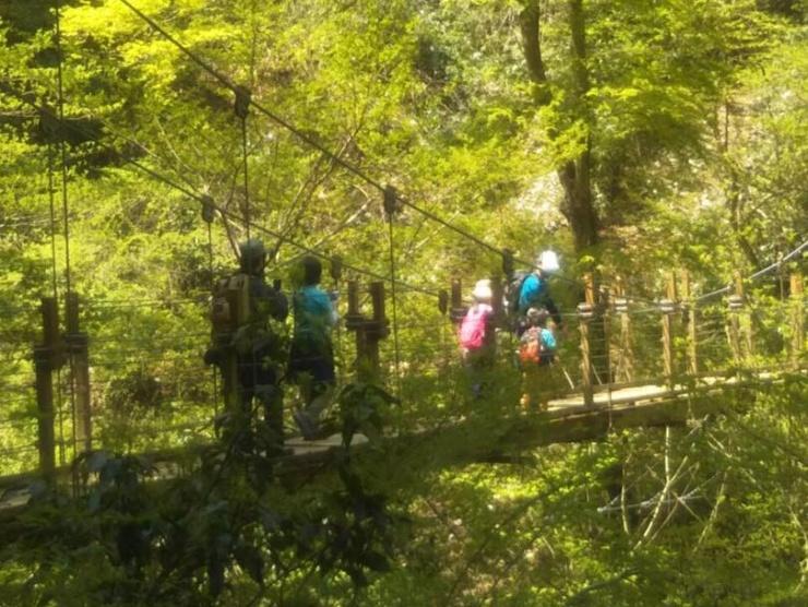 高尾山4号路 子どもたちも自然に囲まれリフレッシュ