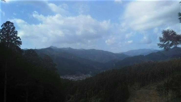 青梅丘陵ハイキングコースからの景色