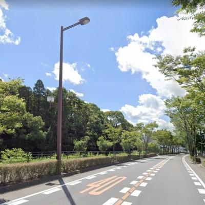 【5/29】自動車の町、豊田市巡りランニング【約13km】