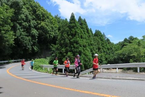 大雄山駅~足柄峠走(往復26km程度)練習会(7分~8分/km)