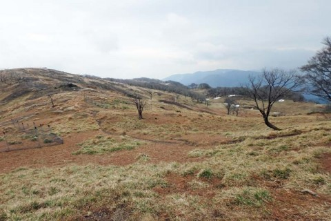 ≪ランde観光山学部≫伊勢湾と琵琶湖を望む!花の藤原岳から鈴鹿最高峰の御池岳ラウンド【レベル6】