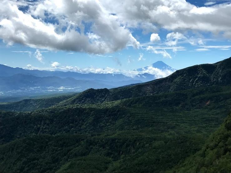 八ヶ岳の樹海とその奥に富士山の絶景