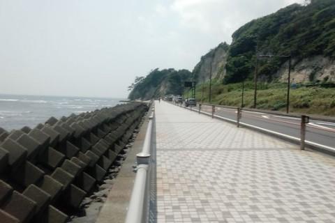 Saturday Morning Run(港南台~江ノ島ロード&トレイルラン+スパ)