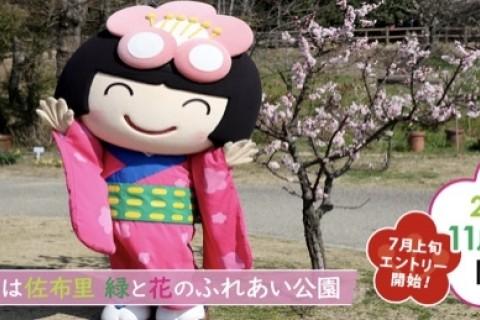 ちた梅子マラソン ジョギング部門(中学生以下のお申込み)