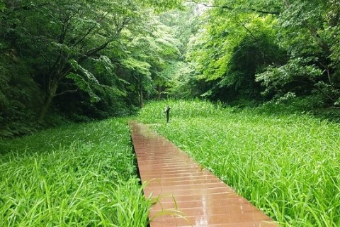 Saturday Morning Run(大船周回ロード&トレイルラン)