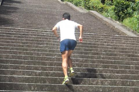 Run in the Park 公園で走ろう!第8回 京都伏見桃山御陵&北堀公園