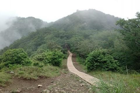 Saturday Morning Run(塔ノ岳トレイルラン)