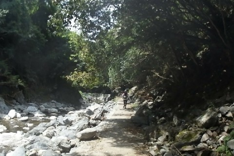 京都一周トレイル4分割マラニックその4「北山から西山へ編」