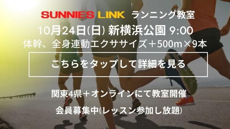 【新横浜公園】芝で体幹/全身連動エクササイズ+500m×3×3