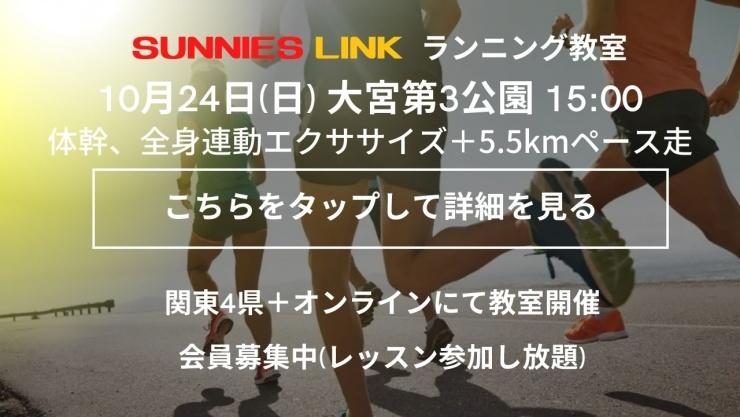 【埼玉大宮第3公園】芝で体幹/全身連動エクササイズ+5.5kmペース走