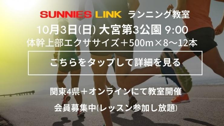 【埼玉大宮第3公園】体幹、特に上部をうまく使えるようにするエクササイズ+500m×8~12本