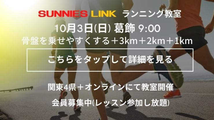 【葛飾】骨盤を乗せやすくして楽に前に進む+3.3km+2.2km+1km
