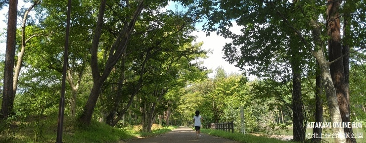 総合運動公園大堤林道