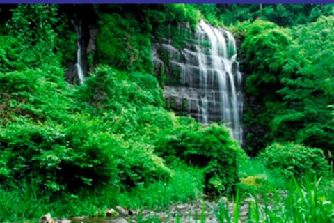 2020東京オリンピック・パラリンピック開催記念 つる湧水の里ウオーク2021【都留市民限定】