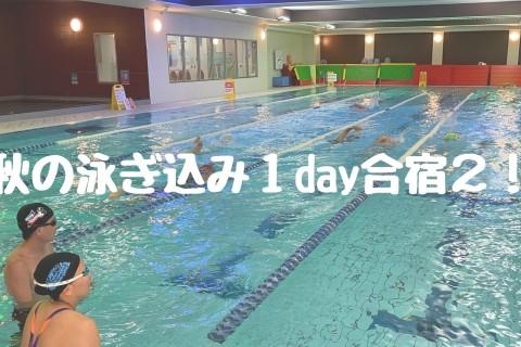 秋の泳ぎ込み1day合宿2!かとすいトライアスロンスイム小岩スペシャル