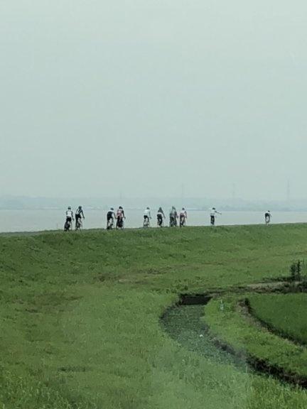スーパーフラット霞ヶ浦湖岸道
